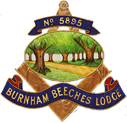 Burnham Beeches 5895