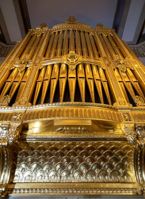 A picture of an organ